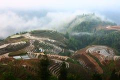 Guilin-Terrasse mit Nebel Stockfotografie