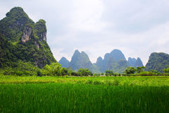 Guilin, Yangshuo scenery. Nature, Beauty Stock Images