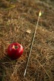 Guillermo dice la metáfora con la manzana y la flecha rojas Imagenes de archivo