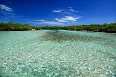 Guilligan's Island. At Guanica, Puerto Rico Royalty Free Stock Photos