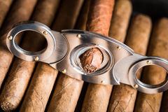 Guillotine and cigar tip Royalty Free Stock Images