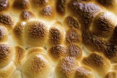 Guimauve grillée Image stock