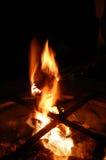 Guimauves de torréfaction sur le feu de camp Image libre de droits