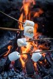 Guimauves douces et chaudes sur le bâton au-dessus du feu image libre de droits