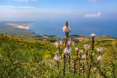 Guincho from Peninha Royalty Free Stock Photos