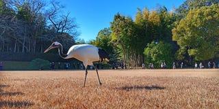 Guindaste no jardim de Okayama Korakuen, Japão imagens de stock