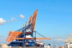 Guindastes coloridos do porto no porto de rotterdam Fotografia de Stock Royalty Free