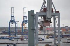 Guindastes da carga no porto Fotos de Stock Royalty Free