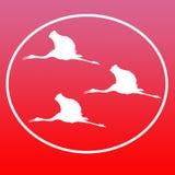 Guindastes de voo Logo Background Icon General Purpose de Sarus ilustração do vetor
