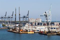 Guindastes do porto de Miami Foto de Stock