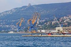 Guindastes do porto de Trieste Fotografia de Stock