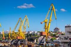 Guindastes do porto do pórtico na skyline Fotos de Stock