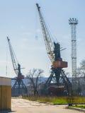 Guindastes grandes no porto marítimo Imagens de Stock