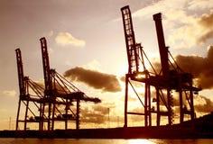 Guindastes industriais da carga no por do sol foto de stock royalty free