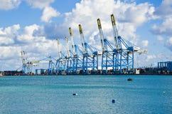 Guindastes no porto franco Foto de Stock