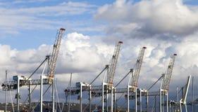 Guindastes portuários da carga Imagens de Stock Royalty Free