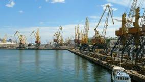 Guindastes portuários marinhos, e zona industrial na parte dianteira da carga do porto comercial do mar de Odessa em Ucrânia video estoque