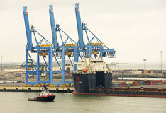 Guindastes, recipientes & navios Foto de Stock