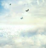 Guindineaux dans le ciel Photographie stock libre de droits