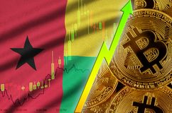 Guinea Bissau flag and cryptocurrency growing trend with many golden bitcoins. Guinea Bissau flag  and cryptocurrency growing trend with many golden bitcoins stock image
