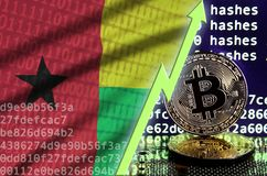 Guinea Bissau flag and rising green arrow on bitcoin mining screen and two physical golden bitcoins. Concept of high conversion in cryptocurrency mining royalty free stock image