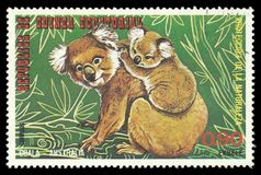 Australian Animals, Koala. Guinea Equatorial - stamp printed 1974, Multicolor Edition of offset printing with Topic Fauna and Mammals, Wildlife, Series royalty free stock images