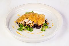 Guinea fowl with rice. Guinea fowl with wild rice royalty free stock photo