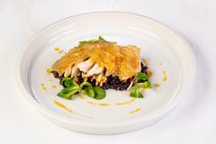 Guinea fowl with rice. Guinea fowl with wild rice stock images