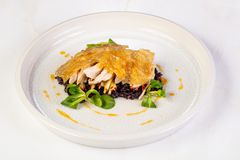 Guinea fowl with rice. Guinea fowl with wild rice stock photo