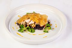 Guinea fowl with rice. Guinea fowl with wild rice royalty free stock image