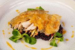 Guinea fowl with rice. Guinea fowl with wild rice royalty free stock photos