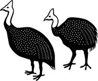 Guinea Fowls Royalty Free Stock Photography