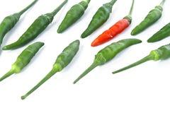 Guinea-pepe Immagini Stock