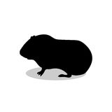 Guinea pig pet rodent black silhouette animal. Vector Illustrator Royalty Free Stock Images