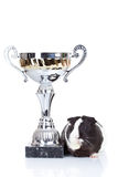 Guinea pig and a winners cup Stock Photography