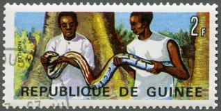 GUINEA - 1967: shows Men holding rock python Stock Photo