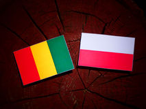 Guinean flag with Polish flag on a tree stump isolated. Guinean flag with Polish flag on a tree stump stock illustration