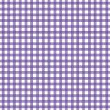 Guinga púrpura Fotografía de archivo