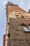 Guinigi tower in Lucca, Italy, with trees on the top Royalty Free Stock Photography