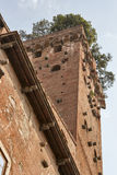 Guinigi tower in Lucca, Italy, with trees on the top Stock Photo