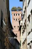 Guinigi wierza, Lucca Fotografia Stock