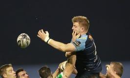Guinnes pro-12 rugby - Benetton vs Cardiff Royaltyfri Foto
