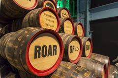 Guinness storehouse muzealna wycieczka turysyczna obraz stock