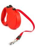 Guinzaglio ritrattabile rosso per il cane Fotografie Stock Libere da Diritti