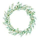 Guirlande avec des branches d'eucalyptus illustration de vecteur
