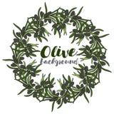 Guirlande avec la branche de l'olive Images stock