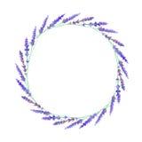 Guirlande avec le lavander floral illustration de vecteur