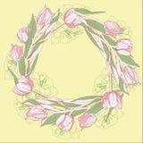 Guirlande avec les tulipes blanches roses Images libres de droits