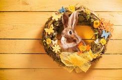 Guirlande circulaire décorative de Pâques avec le lapin photo libre de droits