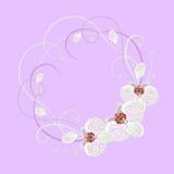 Guirlande décorative avec l'élément floral Images libres de droits